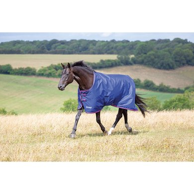Tempest Original by Shires Outdoor 100Gr Navy/Pink
