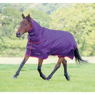 Tempest by Shires Outdoor Combo 300 Purple/Red 100/130
