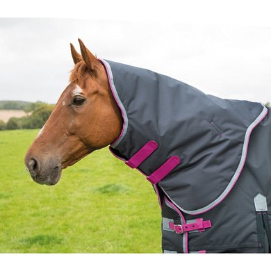 Highlander Original by Shires Halsstuk 300 Charcoal/Grey/Raspberry