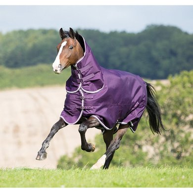 Tempest Plus by Shires Outdoor Combo 200 Purple 155/206