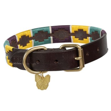 Digby & Fox by Shires Halsband Drover Polo Geel/Groen/Paars