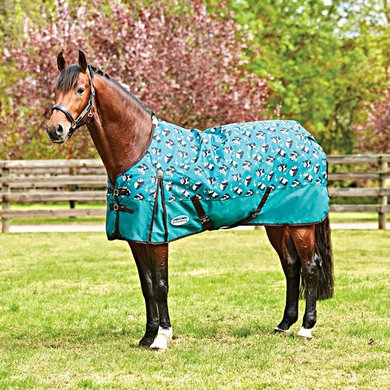 Weatherbeeta Medium Plus Turnout Comfitec Neck Panda 155/205
