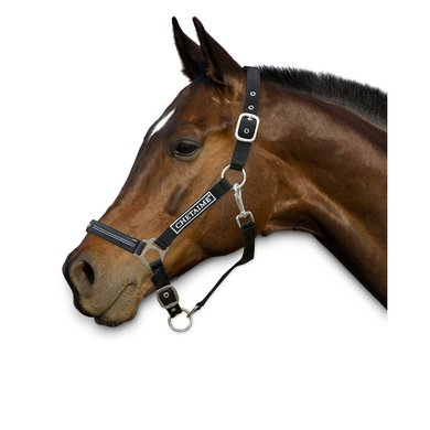 Chetaime Safety First Halster Zwart Pony