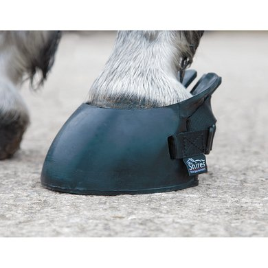 Shires Hoefschoen Temp Black