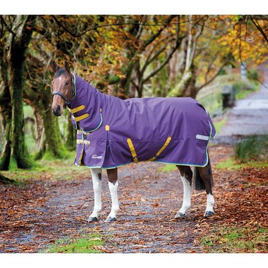 Highlander Plus by Shires Outdoordecke Combo 200 Lila