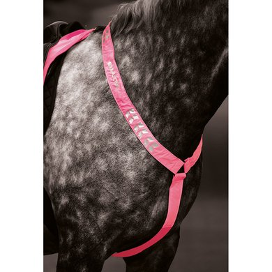 Shires Reflecterend borsttuig Equi Fluor roze Cob/Full