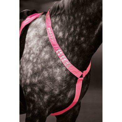 Shires Reflecterend borsttuig Equi Fluor roze Pony/Cob