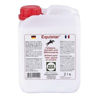 Stassek Recharge Equistar