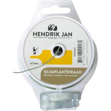 Hendrik Jan Klimplantdraad