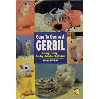 Tijssen Boek Guide To Owning Gerbil