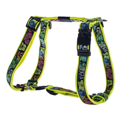 Rogz Armed Response Tuigje Dayglo Floral 25mm - 1