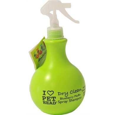 Ph Dry Clean Spray Shampoo 450ml