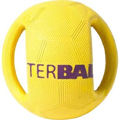 Petbrands Interball+swing Tag Label Medium