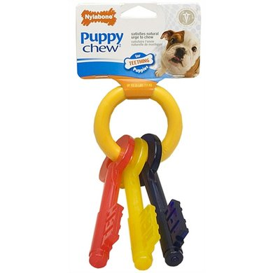 Nylabone Durable Chew Puppy Bijtsleutels