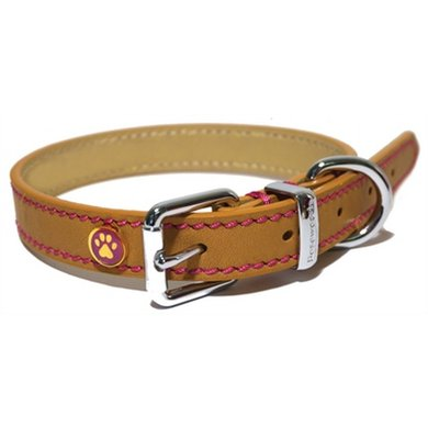 Halsband Hond Leer Luxe Zand