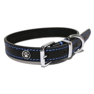 Dog Collars Croatia