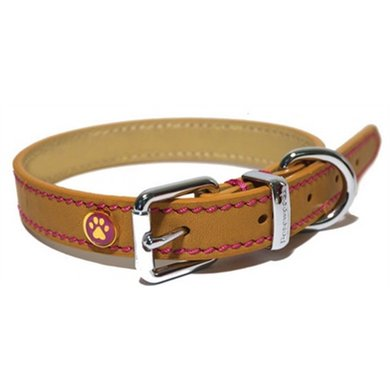 Luxury Leather Halsband Hond Zand Studs 20 - 25.5cm
