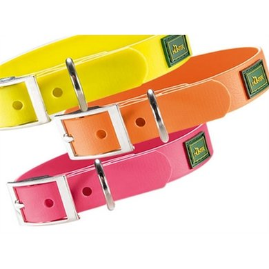 Hunter Halsband Convenience Neon Geel 40x2cm