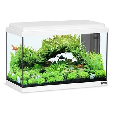 Adm Aquarium Advance Led Wit 50