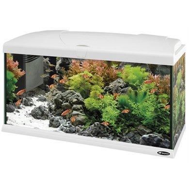 Ferplast Capri Aquarium Wit 80x31.5x46.5cm