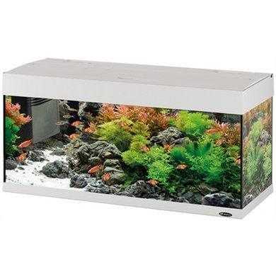 Ferplast Aquarium Dubai 100 Led Wit 190l 101x41x53cm