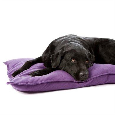 Lex&max Hoes Voor Hondenkussen Tivoli Paars 100x70cm