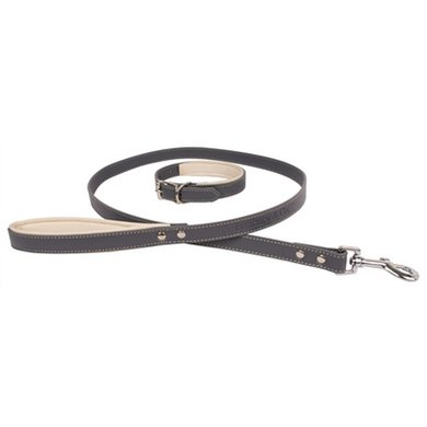 Banbury  Co Luxury Dog Halsband Hondenriem 40x2cm/120x2cm