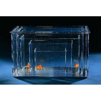 Plastic Aquarium Extra Large 40.5x25.7x22cm