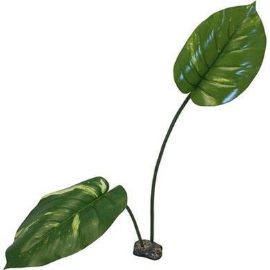 Komodo Guiana Plant 70cm