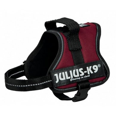 Julius K9 Power-harnas/tuig Labels Bordeaux Mini/51-67cm