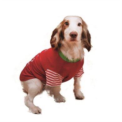Cupid  Cohonden T-shirt Im A Litte Present Rood/groen 34cm