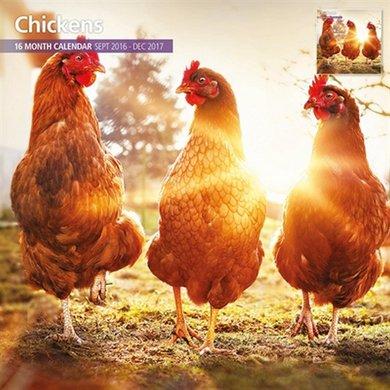 Magnetsteel Kalender 2017 Chickens Traditioneel 30x30cm