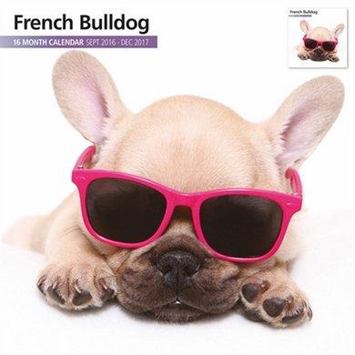 Magnet&steel Kalender 2017 Franse Bulldog Modern 30x30cm