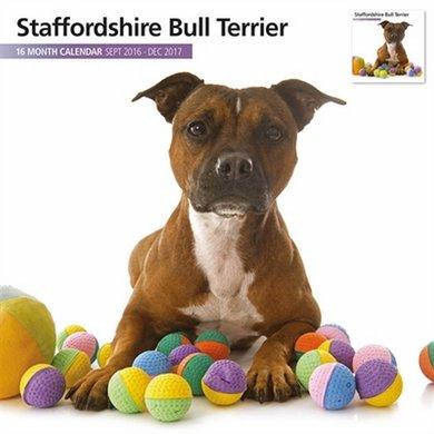 Magnetsteel Kalender 2017 Stafshire Bullterrier M 30x30cm