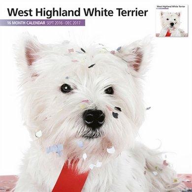 Magnetsteel Kalender 2017 Whighland White Terrier M 30x30cm