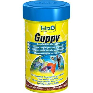 Tetra fish food flakes guppy for Guppy fish food