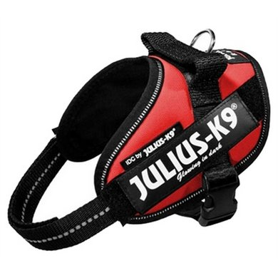Julius K9 Power-harnas/tuig Voor Labels Rood MinI/49-67cm