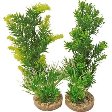 Aquarium Plant 349701 Medium