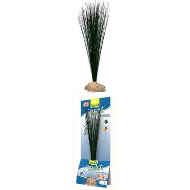 Tetra Plant Hairgrass 35cm