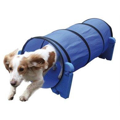 Agility Kleine Hond Tunnel