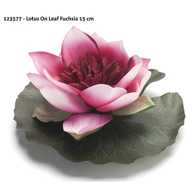 Lotus On Leaf Fuchsia 15cm