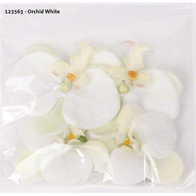 Orchid White 4 Pieces 7/9cm