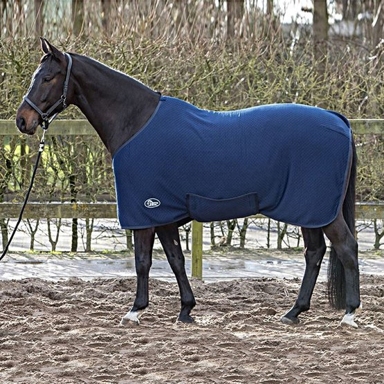Harrys Horse Under Rug Thermoliner