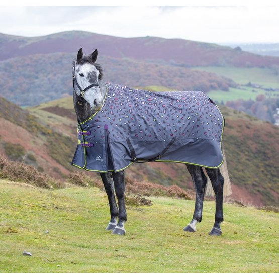 Shires Turnout Rug 200