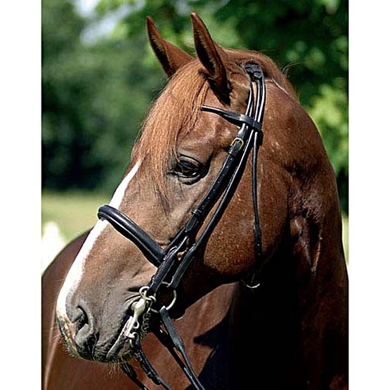 quality leather HKM Double Bridle Rolled Leather sewn by hand rolled leather