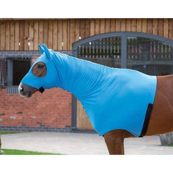 Shires Stretch Hood with Full Face Blue - Agradi.com
